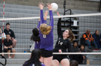 Gallery: Volleyball North Thurston @ Central Kitsap